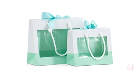 Windowbag Mint with ribbon